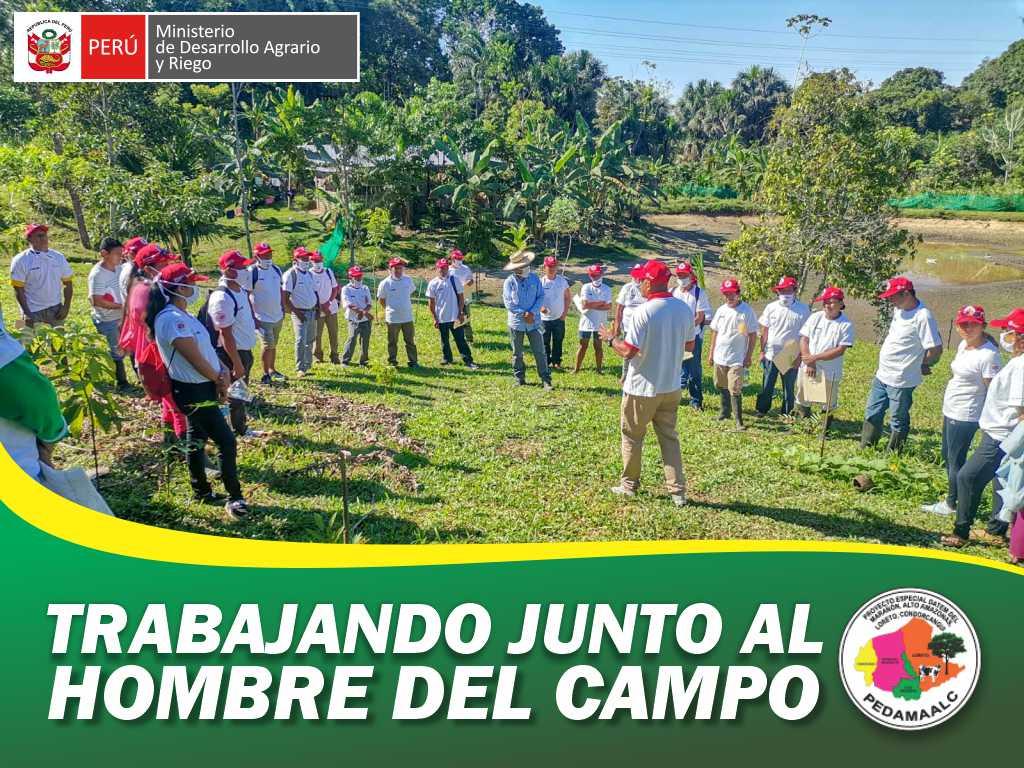 PROYECTO REFORESTACIÓN EN 7 CASERÍOS DEL EJE CARRETERO CAPACITO A SUS BENEFICIARIOS EN PRÁCTICAS PARA UNA AGRICULTURA Y GANADERÍA SIN QUEMA DE BOSQUE.