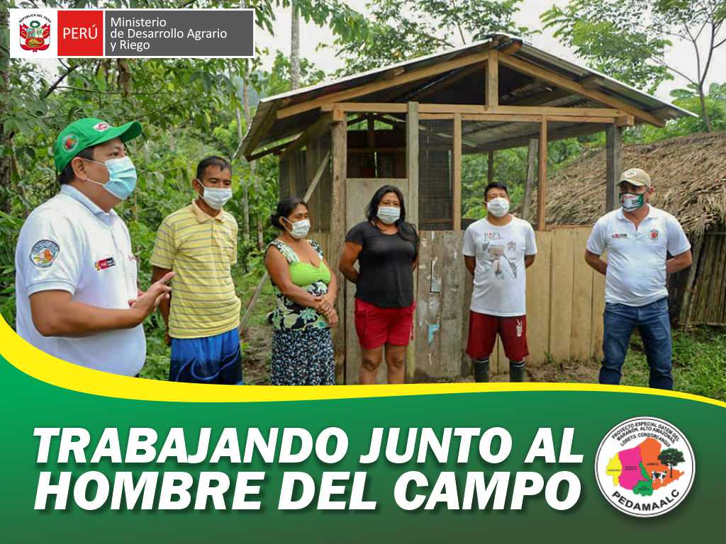 PROYECTO GALLINAS CRIOLLAS MEJORADAS EN CONDORCANQUI AMAZONAS  CONCLUYO PRIMERA ENTREGA DE MÓDULOS DE GALLINAS MEJORADAS A 273 BENEFICIARIOS DE 14 COMUNIDADES AWAJÚN