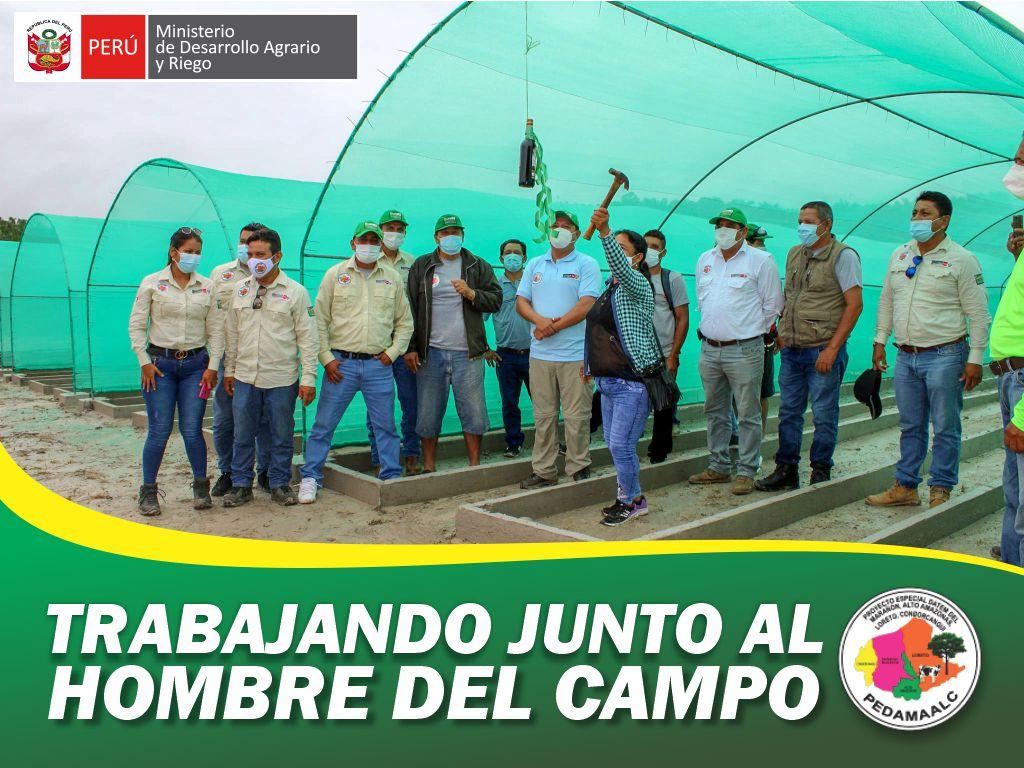 PEDAMAALC ENTREGO Y PUSO EN FUNCIONAMIENTO EL PRIMER VIVERO PERMANENTE EN SANTO TOMAS