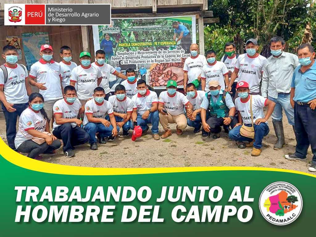 PROYECTO CACAO CENEPA MAMAYAQUE REGIÓN AMAZONAS BENEFICIARIOS PARTICIPAN DE PASANTÍA EN SAN MARTÍN.